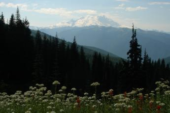 A view of Mt. Rainier during a hike to Noble Knob