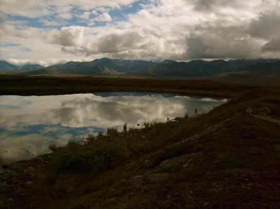 Mountain lakes can be seen throughout Denali National Park.