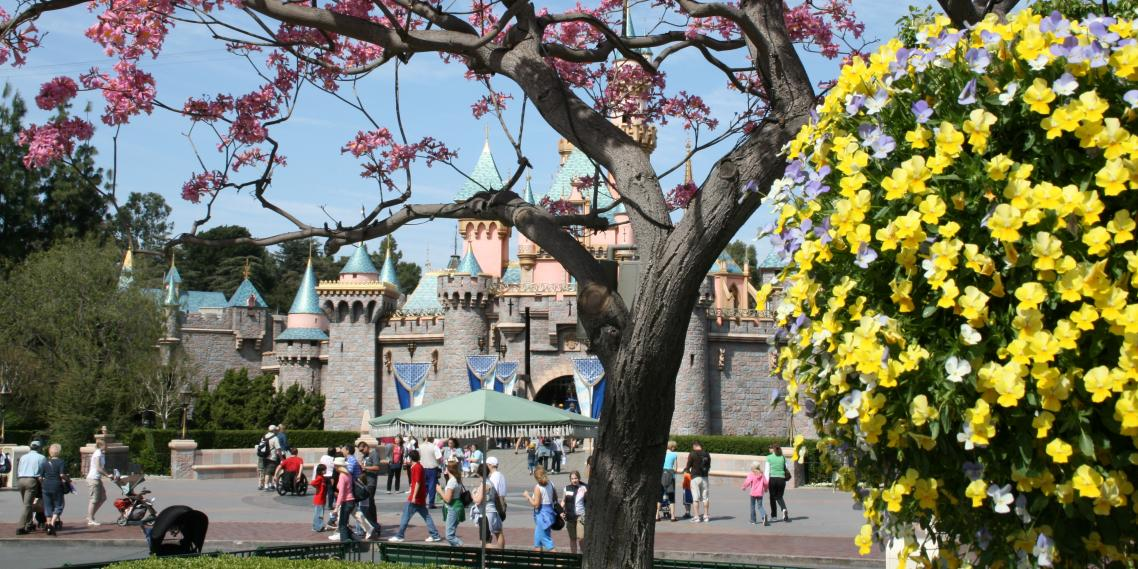 how to disneyland alone out baggage disneyland s sleeping beauty castle