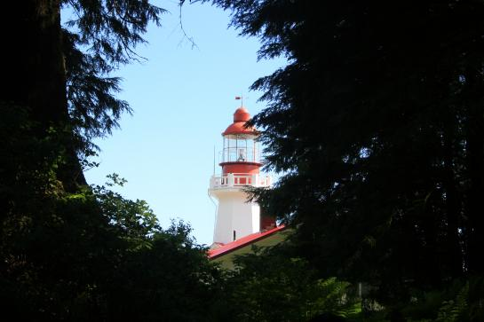 Carmanah Lighthouse peaks out through a gap in the forest