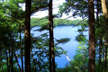 Walden Pond, in Concord, Massachusetts, is the location where Henry David Thoreau wrote his most famous work.