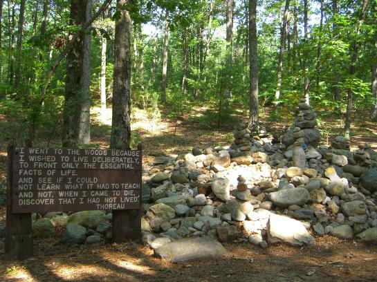 A sign serving as a tribute to Thoreau stands in the forest near Walden Pond.
