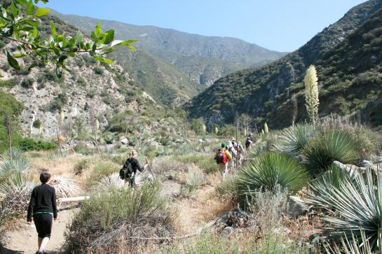 Hikers walk through the Sheep Mountain Wilderness.
