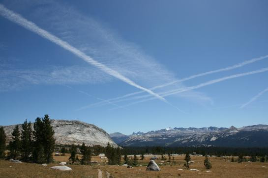 Meadow view in Tuolumne Meadows