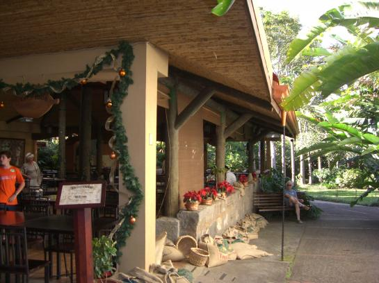 The cafe at the Cafe Britt Coffee Plantation in Heredia, Costa Rica
