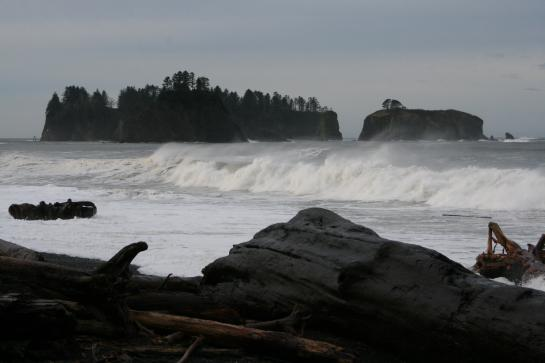 Waves crash onto First Beach in La Push, Washington.