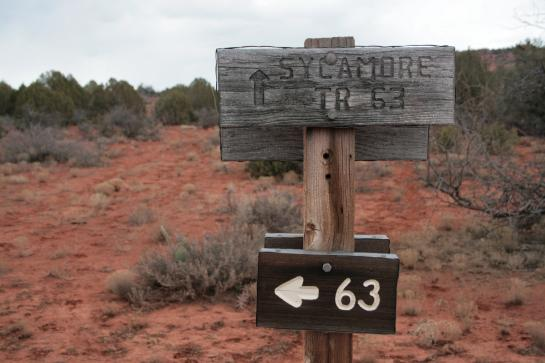 An exceptionally confusing trail sign near Sycamore Canyon, Arizona.