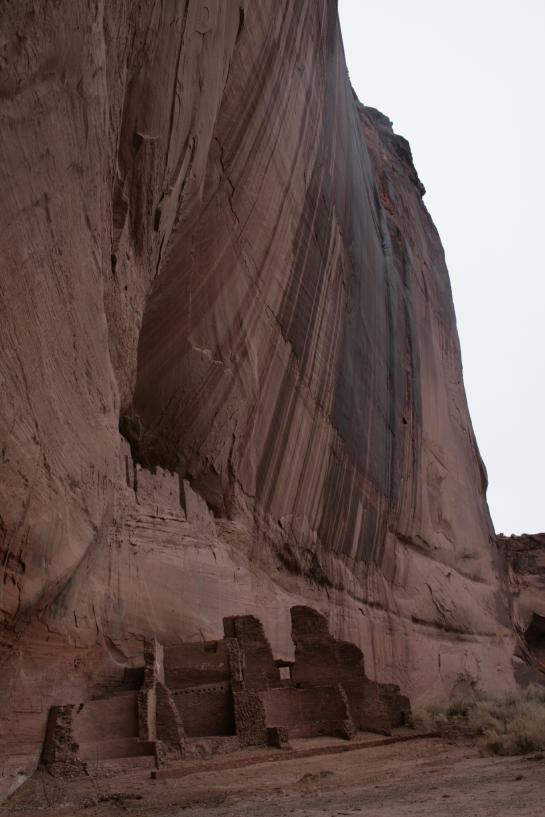 Ruins of an Anasazi cliff dwelling sit at the end of the White House Ruins Trail in Canyon de Chelly National Monument.