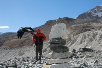 Hank, feeling ill, walks toward Everest Base Camp behind a flying bird.