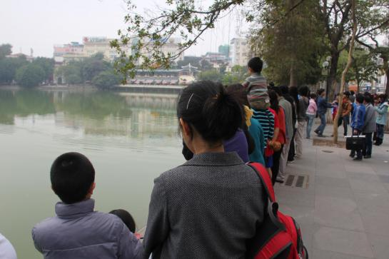 Vietnamese families watch the Hoan Kiem turtle surface in Hanoi's Green Lake.