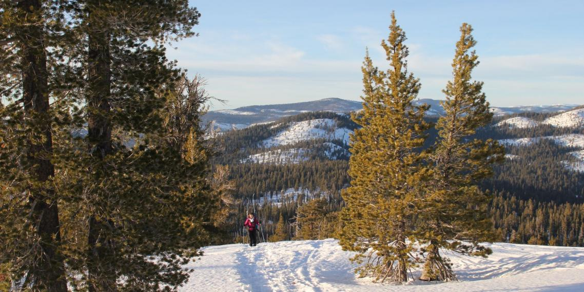 A skier stands on Yosemite's Horizon Ridge on the way to Ostrander Ski Hut.