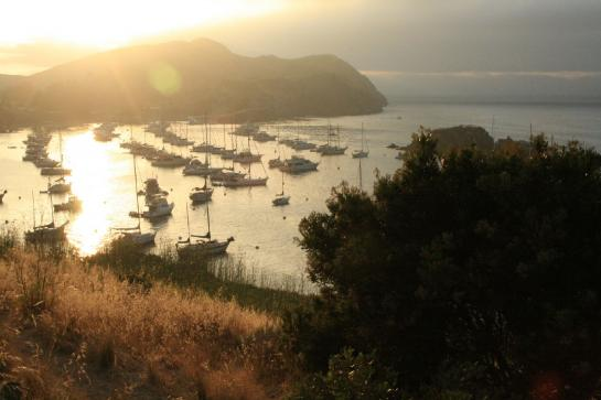 A view of Catalina Island's Emerald Bay (photo by Wendy Eckersley)