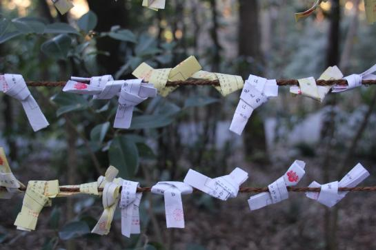 Folded omikuji hang from a wire fence.