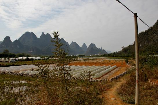 Plastic covers protect crops from cold weather in front of karsts near Yángshuò, Guăngxī, China.