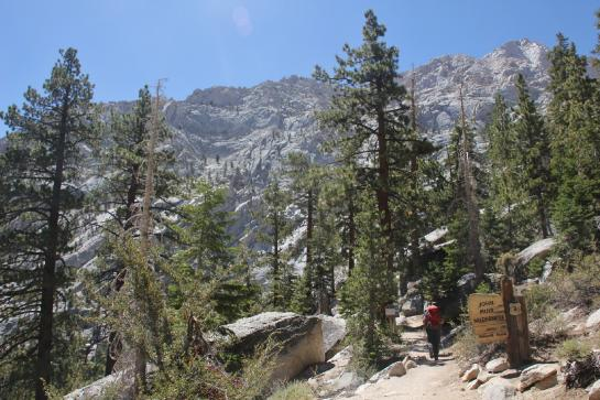 A hiker enters the John Muir Wilderness.