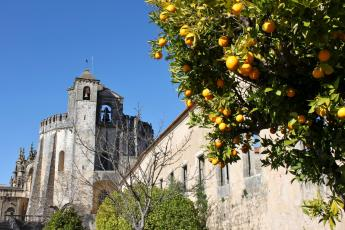Tomar Convent of Christ with orange trees
