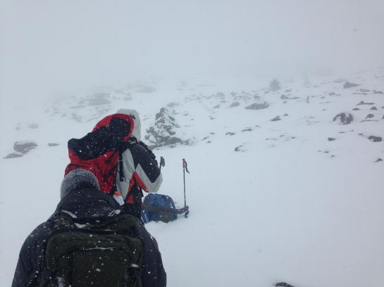 Hikers hike up Mount Washington's summit cone in near-whiteout conditions.