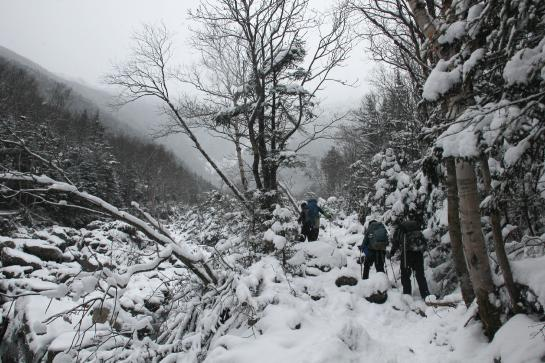 Hikers hike up Mount Washington in deep snow.