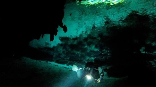 A diving guide dives in a cenote (limestone sinkhole) in the Dos Ojos cave system near Cancún, Mexico.