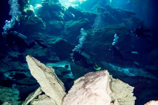 Divers swim in the Dos Ojos flooded cave system near Cancún, Mexico. (photo by Ratha Grimes)