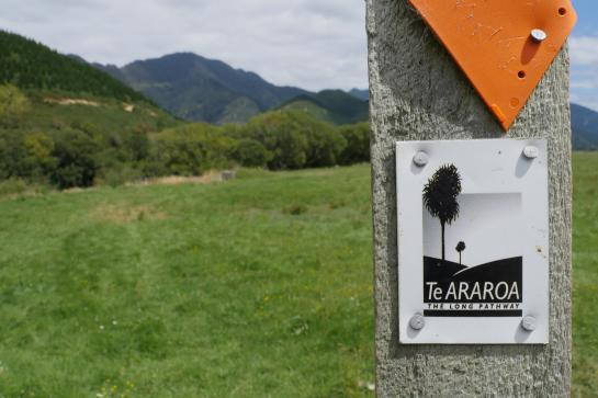 A sign directs Te Araroa hikers near Havelock, New Zealand.