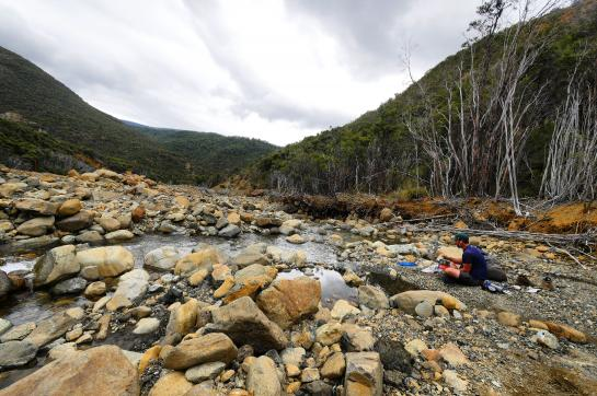 Hank enjoys his last moments in the Richmond Range by eating lunch in a river bed.