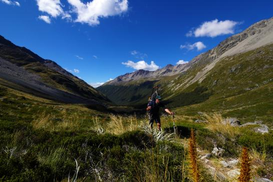 Hiking up Travers Saddle is just a warmup for the challenging climb up Waiau Pass farther down the trail.