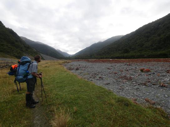 A hiker looks at rocks covered in red, Irish moss in the Taramakau River in Arthur's Pass National Park.