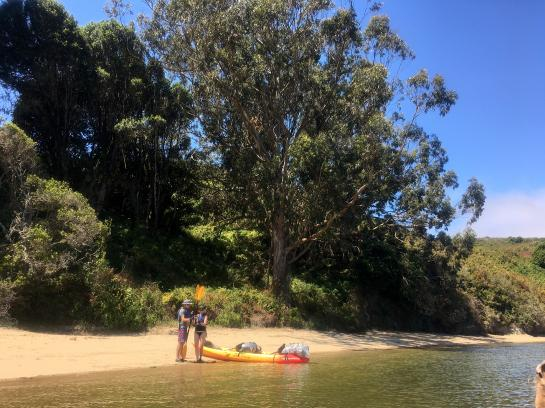 Kayakers get ready to launch from a beach in Tomales Bay, California.